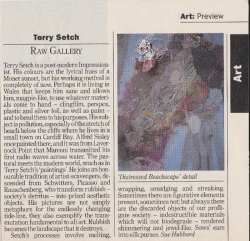 Terry Setch Raw Gallery